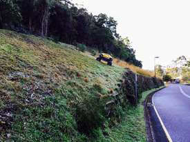 Spider ILD02 Slope Mower - picture3' - Click to enlarge