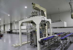 Vertical Packing Line - On Site Viewing Available