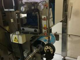 Complete Vertical Form Fill Seal Packaging Line - picture1' - Click to enlarge