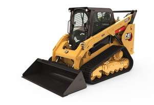 COMPACT TRACK AND MULTI TERRAIN LOADERS - 289D3