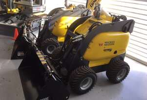 Wacker neuson by Dingo mini loader
