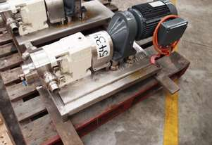 Stainless Steel Lobe Pump - IN/OUT: 35mm