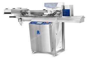Automatic loader for filling moulds