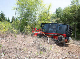 Prinoth Raptor 300 Tracked Forestry Mulcher - picture0' - Click to enlarge