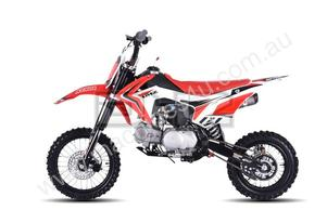 DHZ Outlaw 150cc Standard-Bike All Terrain Vehicle