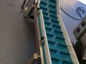 Inclined conveyor - picture1' - Click to enlarge