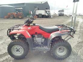 Honda TRX250TM - picture1' - Click to enlarge