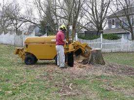 2019 Rayco RG100 Remote Stump Grinder - picture10' - Click to enlarge