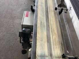 Flat Belt Conveyor - picture3' - Click to enlarge