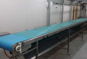 Stainless steel Food Grade Flat Powered Conveyor