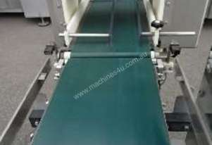 Checkweigher with Drop Down Rejector Conveyor