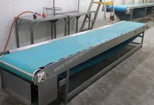 Stainless Food Grade Flat Powered Conveyor 4.3m