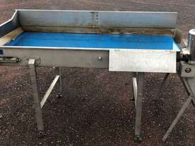 flat belt conveyor - picture1' - Click to enlarge