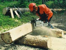 LOGOSOL TIMBERJIG - Chainsaw Mill - picture9' - Click to enlarge