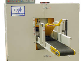 TWIN HEAD HORIZONTAL BANDSAW (band resaw) - picture3' - Click to enlarge