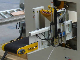 TWIN HEAD HORIZONTAL BANDSAW (band resaw) - picture2' - Click to enlarge
