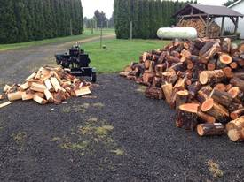 40T Diesel Log Splitter with 100kg Hydraulic lift - picture7' - Click to enlarge