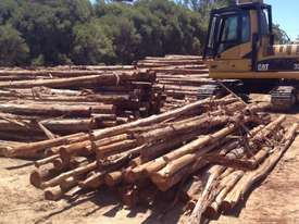 Cat 325C excavator with Randalls log grapple - picture0' - Click to enlarge