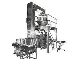 Complete Vertical form fill seal Packaging Line - picture10' - Click to enlarge