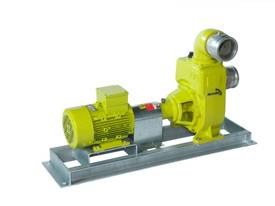 Remko RS100 Electric Water Transfer Pump - picture1' - Click to enlarge