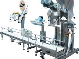 Automatic Bag Weighing Filling and Sealing Line. - picture0' - Click to enlarge