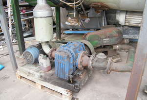 Rotary blower  and motor