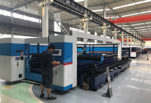 Yangli Fiber Laser Cutting Machine