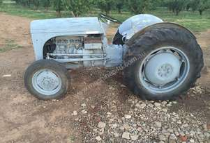 Massey Ferguson Grey Ferguson for sale