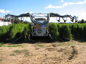 VEGETABLE-TOMATOES SPRAYER - picture1' - Click to enlarge