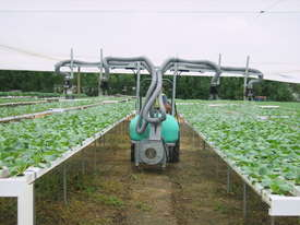 VEGETABLE-TOMATOES SPRAYER - picture2' - Click to enlarge