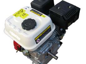 7 HP Petrol Engine Recoil Start - picture0' - Click to enlarge