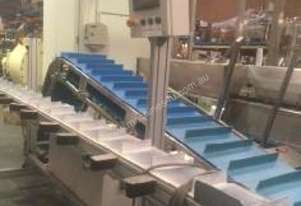 Indexing Cleated Belt Conveyor