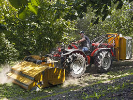 TONY TR 10900 HYDROSTATIC 4WD ANTONIO CARRARO - picture10' - Click to enlarge
