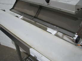 Stainless Steel Variable Speed Motorised Belt Conveyor - 1.3m long - picture3' - Click to enlarge