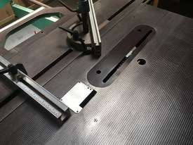 SCM Panel Saw for sale - picture1' - Click to enlarge
