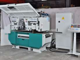 Multi Rip Saw C Series  - picture1' - Click to enlarge