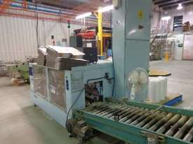 Horizontal Case Packer - picture0' - Click to enlarge