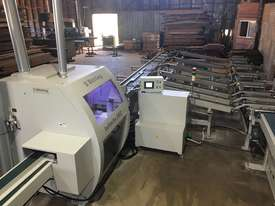 Semi Optimizing Docking Saw - C Series - picture1' - Click to enlarge