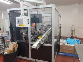 Cartoner and Case Packer - picture4' - Click to enlarge