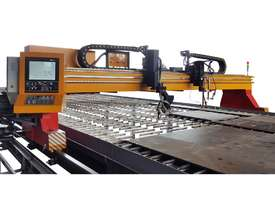 TAYOR CNCSG Gantry type Oxy or Plasma CNC Cutting Machines - picture2' - Click to enlarge
