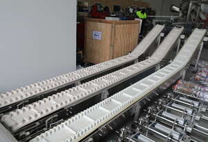 Food Grade Conveyor (2 left!)