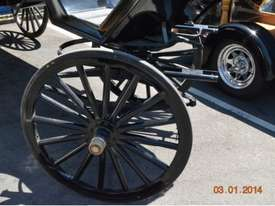 Beautiful Horse Drawn Carriage - picture10' - Click to enlarge