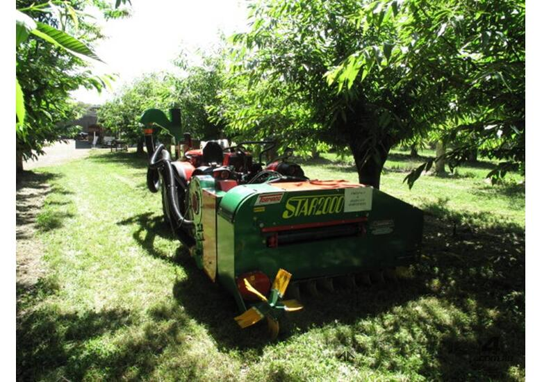 CHESTNUT HARVESTER