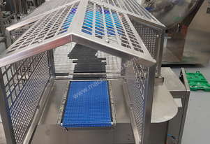 Channelising conveyor