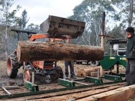 NEW PETROL DRIVEN SAW MILL - picture6' - Click to enlarge