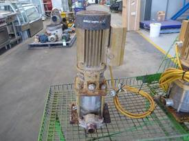 GRUNDFOS 40mm 240VOLT PUMP - picture1' - Click to enlarge