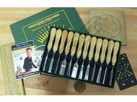 RPCV12A Special Edition Carving Tool Set with Bonus DVD and Booklet 12 Piece - picture2' - Click to enlarge