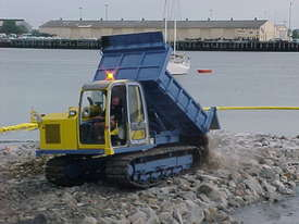 6.0 Tonne Dump Truck for HIRE - picture10' - Click to enlarge