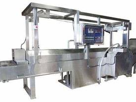 IOPAK Fully Automatic Continuous Fryer