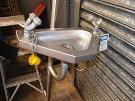 Safety Shower/Combination Unit - picture1' - Click to enlarge